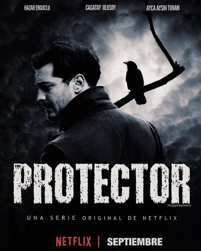 theprotector.jpg